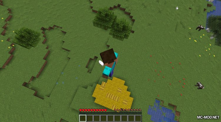 AC Hay Bales mod for Minecraft (5)