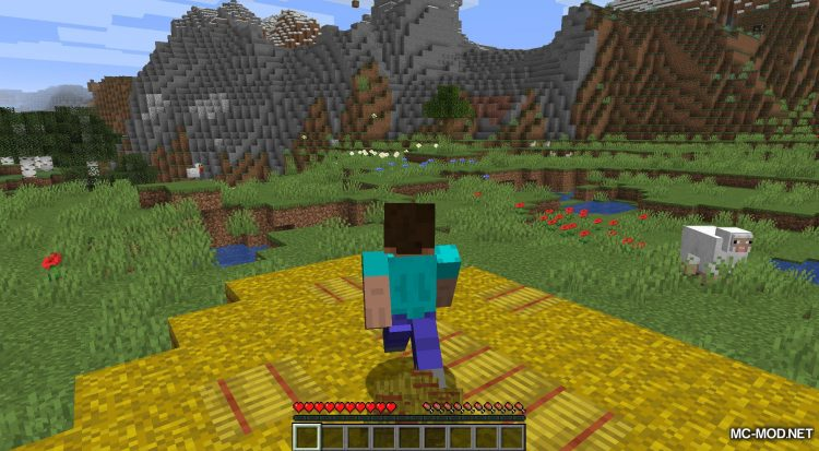 AC Hay Bales mod for Minecraft (6)
