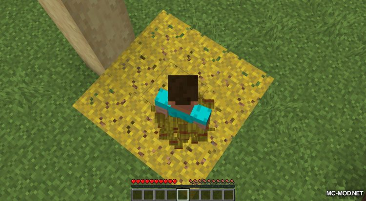 AC Hay Bales mod for Minecraft (9)