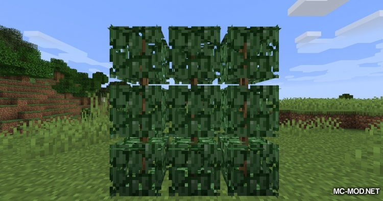 Berry Bushes mod for Minecraft (13)