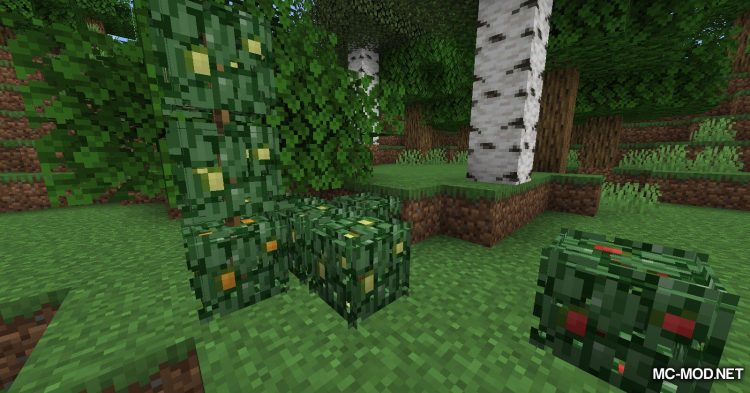 Berry Bushes mod for Minecraft (6)
