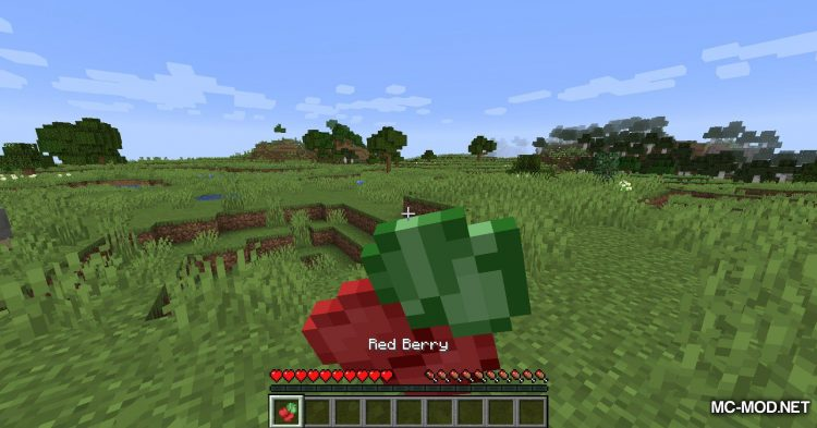 Berry Bushes mod for Minecraft (8)