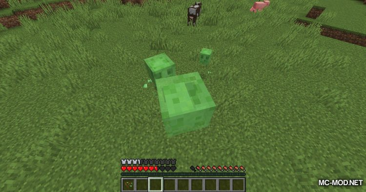 Bouncy Life mod for Minecraft (16)