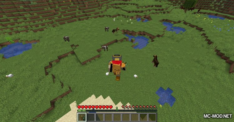 Bouncy Life mod for Minecraft (6)