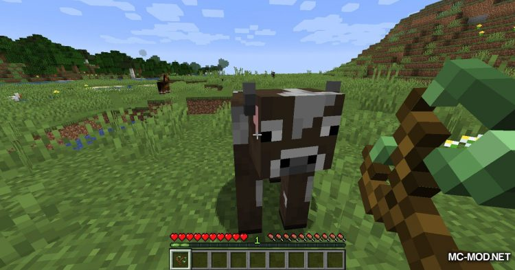 Bouncy Life mod for Minecraft (7)