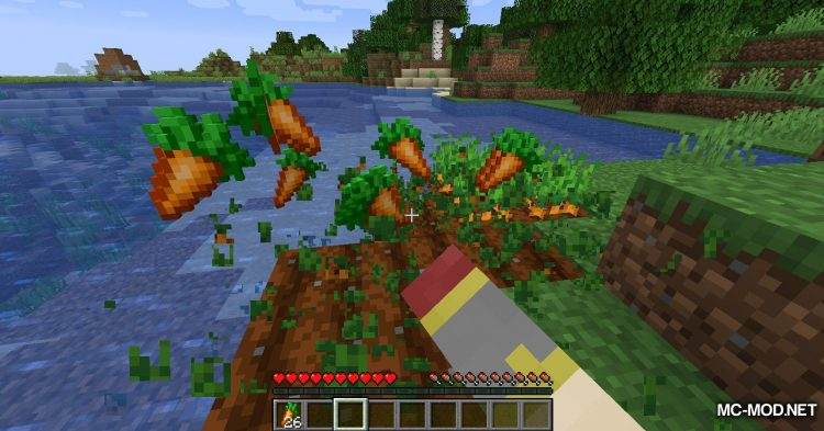 Carrots mod for Minecraft (5)