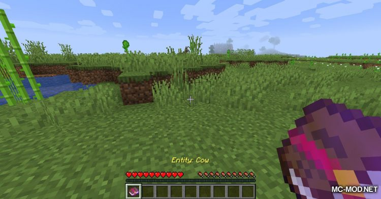 Catch Everything In Book mod for Minecraft (5)
