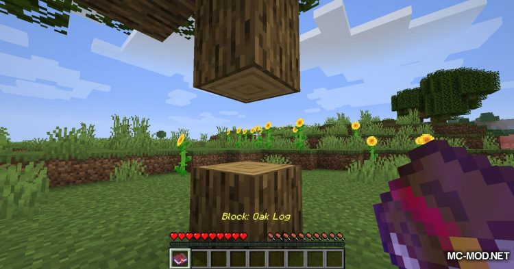 Catch Everything In Book mod for Minecraft (7)