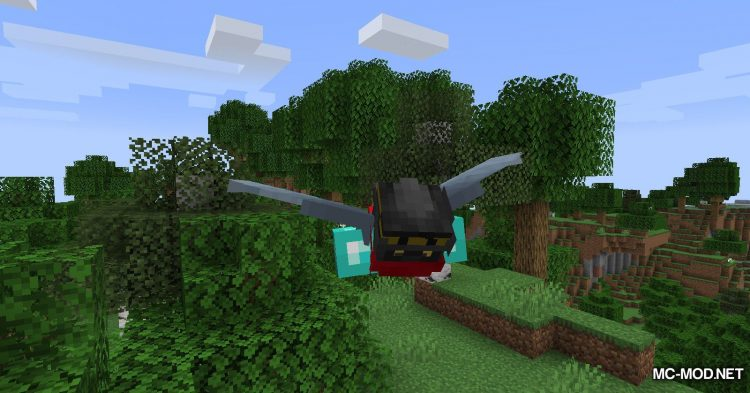 Colytra mod for Minecraft (7)