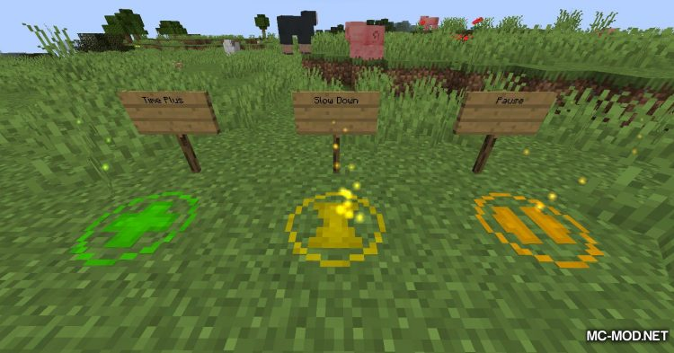 Countdown mod for Minecraft (12)