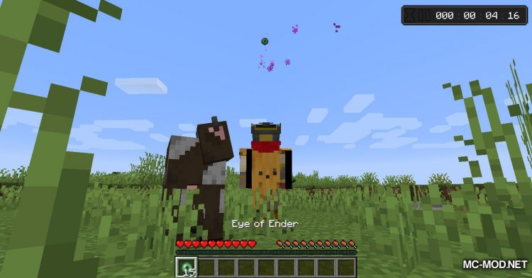 Countdown mod for Minecraft (9)