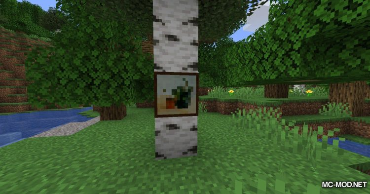 Cycle Paintings mod for Minecraft (6)