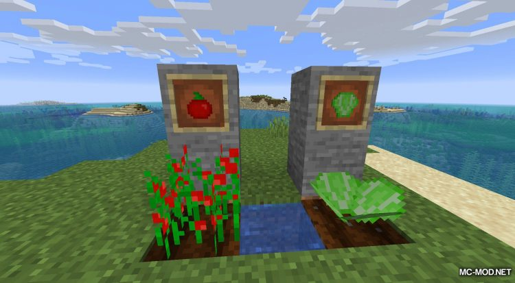 Delicious Dishes mod for Minecraft (10)
