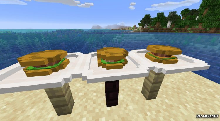 Delicious Dishes mod for Minecraft (14)