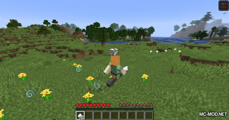 Edibles mod for Minecraft (8)
