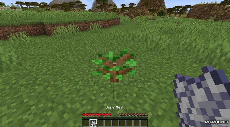 Extended Bone Meal mod for Minecraft (3)