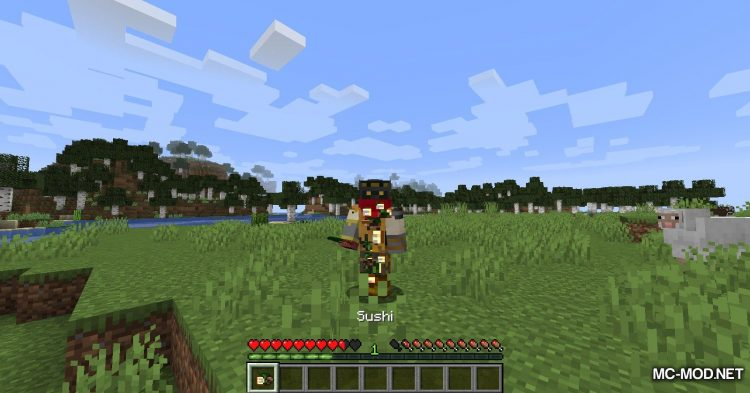 Extra Enrichments mod for Minecraft (17)