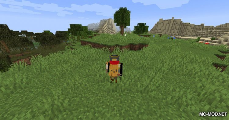 Farts mod for Minecraft (3)