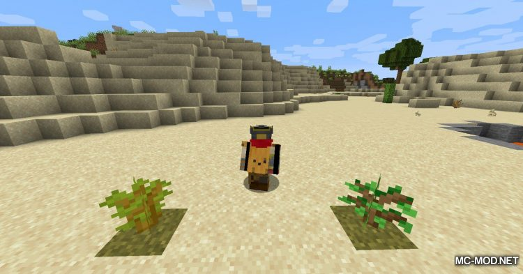 Farts mod for Minecraft (6)