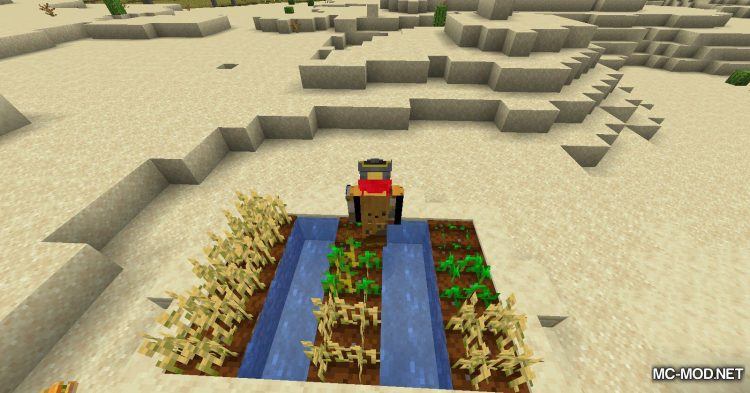 Farts mod for Minecraft (9)