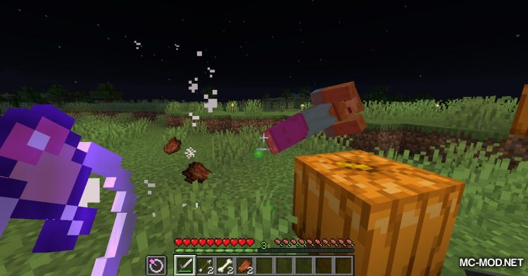 HungerRings mod for Minecraft (11)