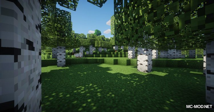 Ignition EnderBags mod for Minecraft (2)