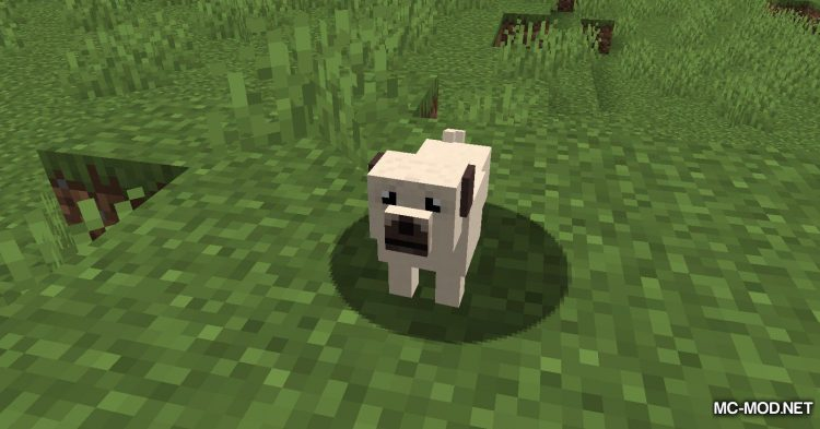 More Dogs mod for Minecraft (10)