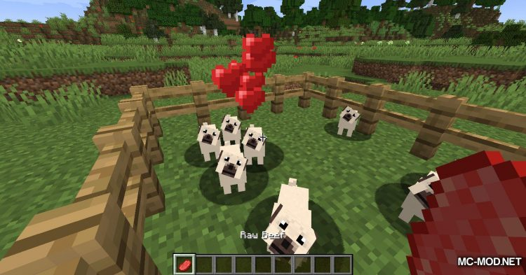 More Dogs mod for Minecraft (13)