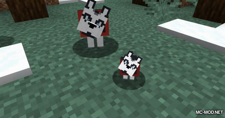 More Dogs mod for Minecraft (6)