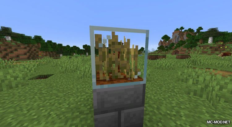 Plant In A Jar mod for Minecraft (10)
