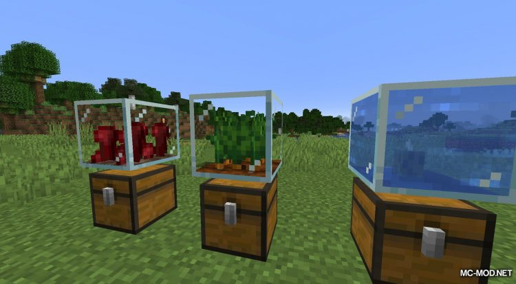 Plant In A Jar mod for Minecraft (11)