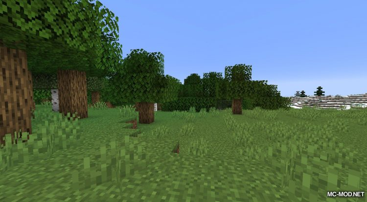 Player Mini-Me mod for Minecraft (3)