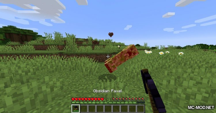 Resolute mod for Minecraft (8)