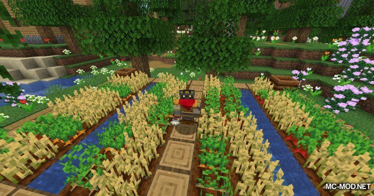 Ring of Growth mod for Minecraft (8)