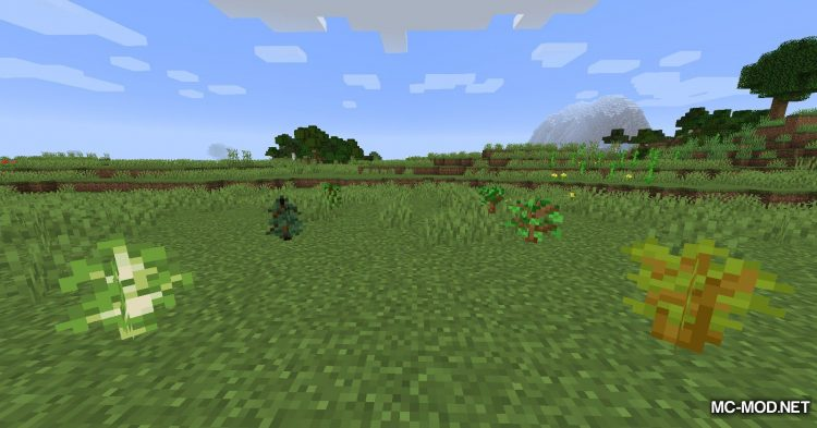 Ring of Growth mod for Minecraft (9)