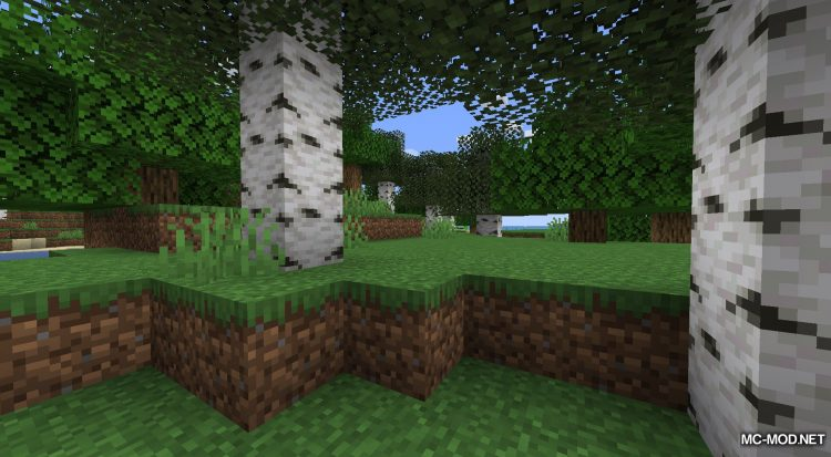 Rosy_s Placeable Items Mod mod for Minecraft (2)