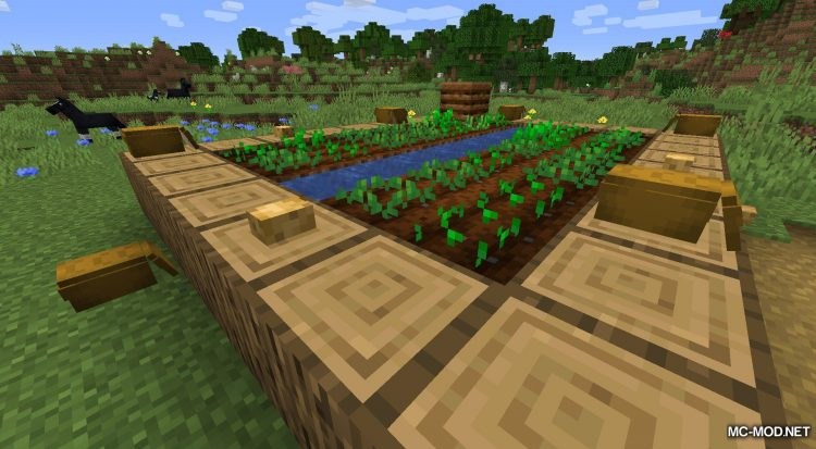 Rosy_s Placeable Items Mod mod for Minecraft (9)