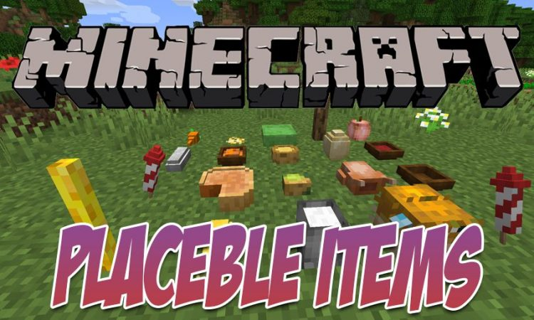 Rosy_s Placeable Items Mod mod for Minecraft logo