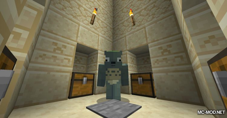 Time To Live mod for Minecraft (4)