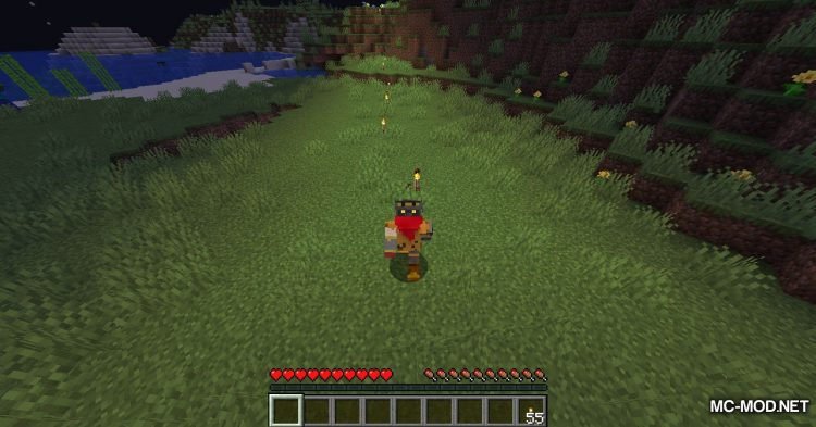 Torchplacer mod for Minecraft (4)