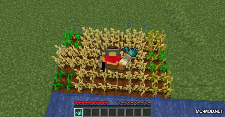 Watercan mod for Minecraft (9)