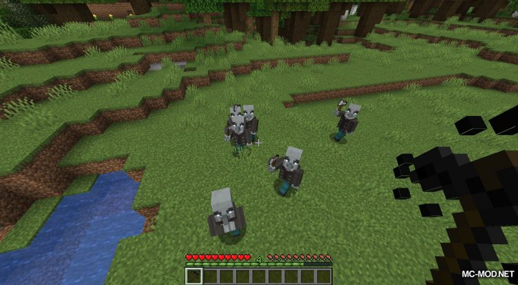 Wither Hoe Mod mod for Minecraft (12)